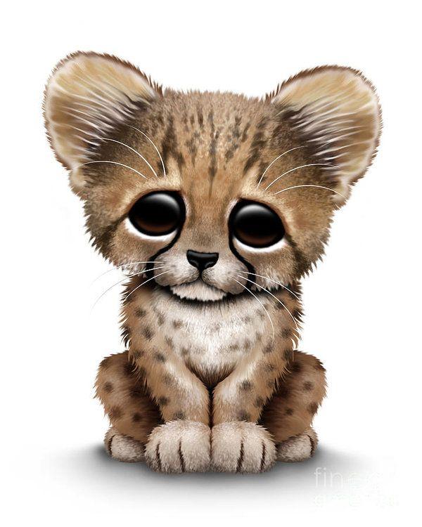 Cute baby art print. Cheetah clipart cheetah cub