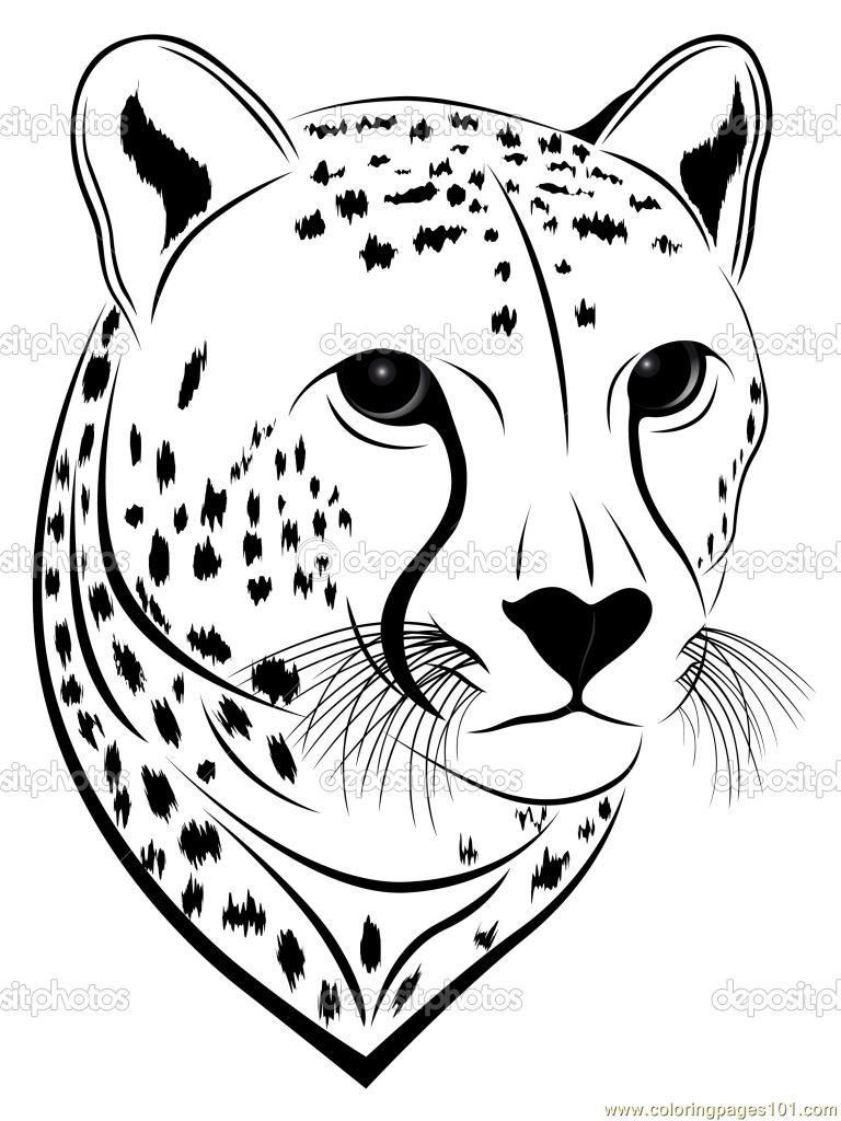 Cheetah Clipart Coloring Cheetah Coloring Transparent Free For