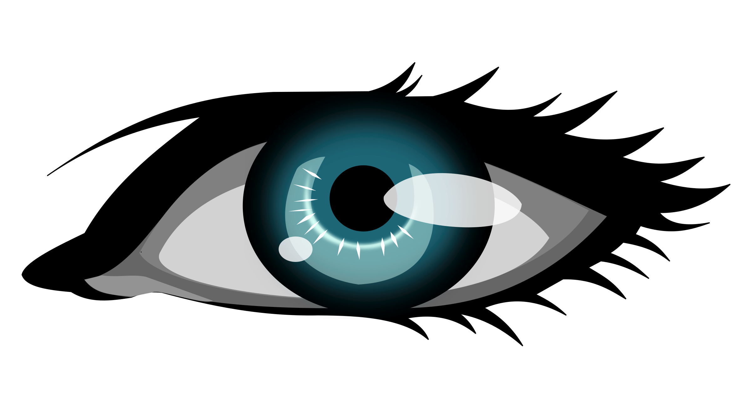 Eyelashes clipart clip art. Olhar the eye big