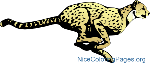 Cheetah clipart kid. Nice coloring pages for