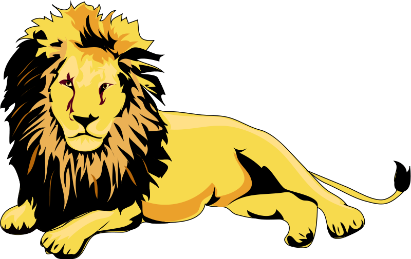 Clip art of animals. Clipart face lioness