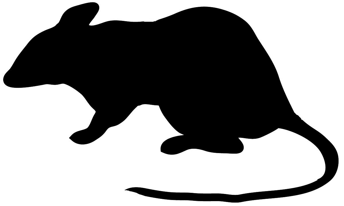 Running cheetah silhouette at. Rat clipart big rat