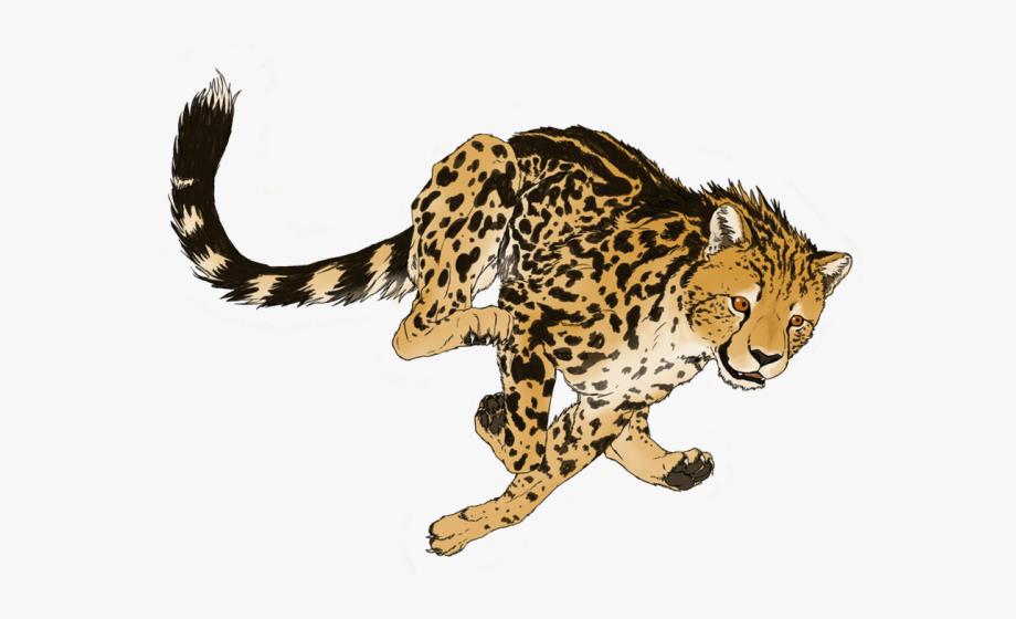 Transparent cliparts . Cheetah clipart tail