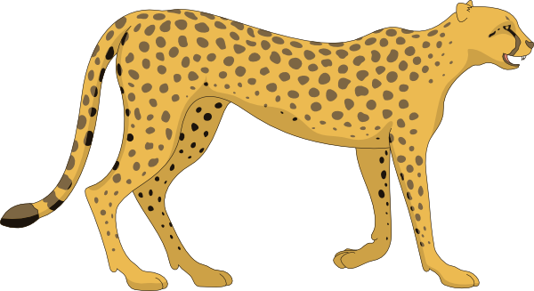 Cheetah clipart transparent background. Png images free download