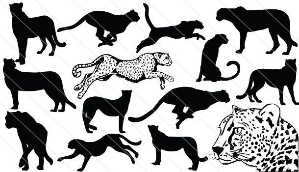 Cheetah clipart vector. Silhouette graphics tattoos