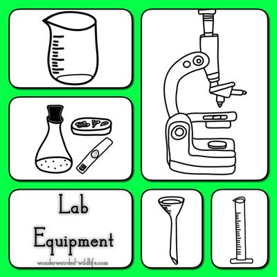 Chemical clipart lab equipment. Pictures of botany tools
