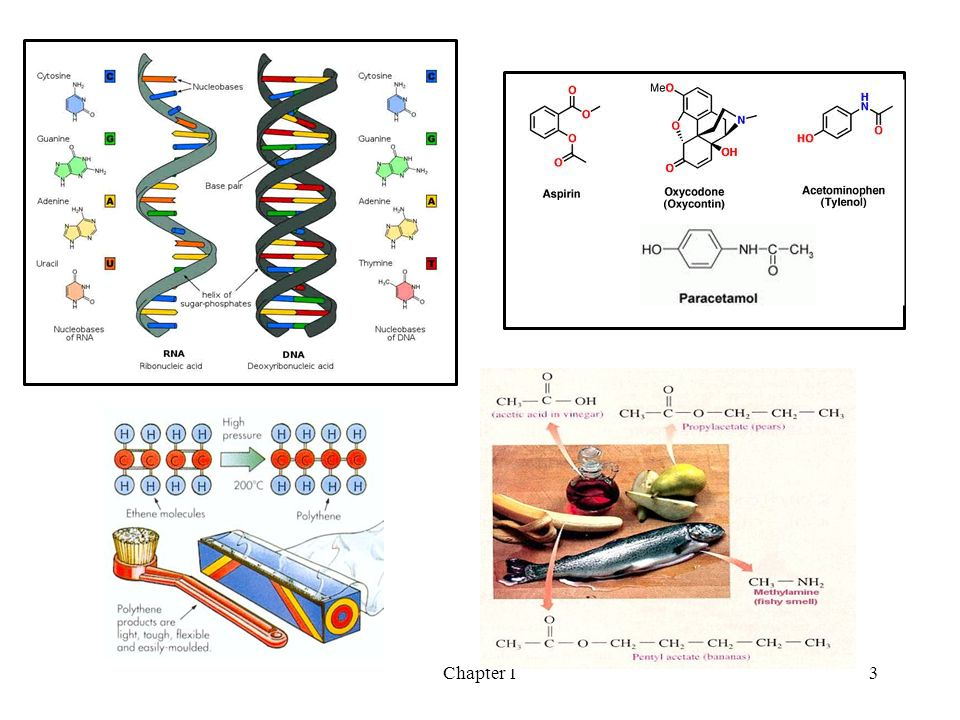 Chemicals clipart organic chemistry. Chapter carbon compounds and