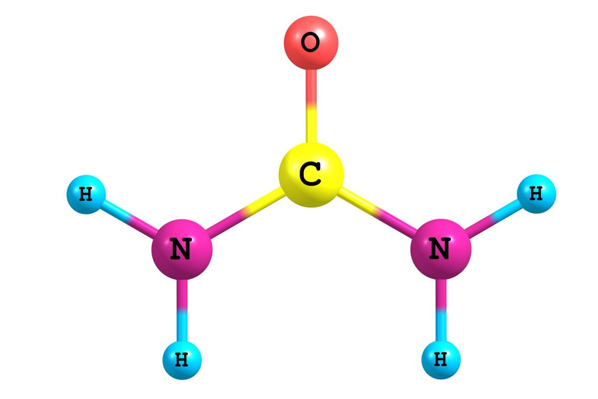 Compounds examples there is. Chemical clipart organic chemistry