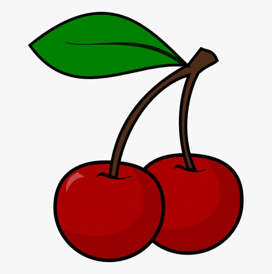 Cherry outline . Cherries clipart