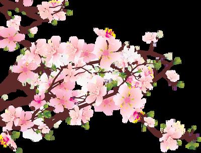 Clipart tree apple blossom. Cherry clip art free
