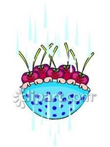 Cartoon of royalty free. Cherries clipart bowl