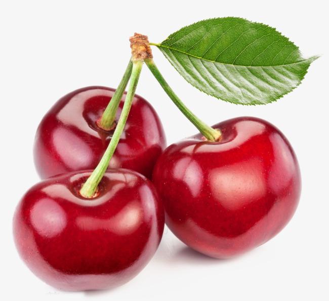 Cherry clipart bunch cherry. Of cherries red three