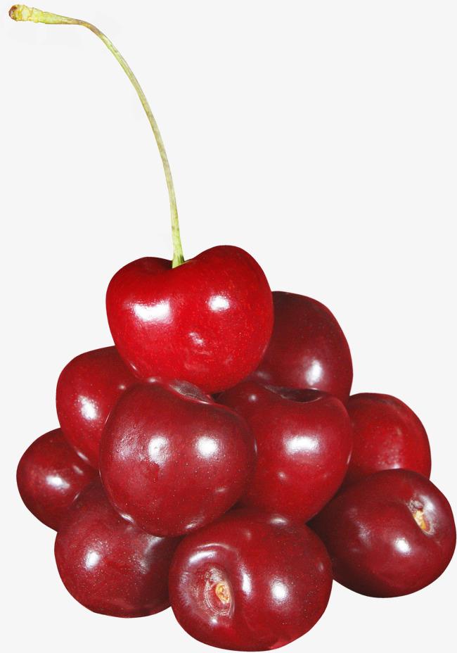 Red fruit of cherries. Cherry clipart bunch cherry