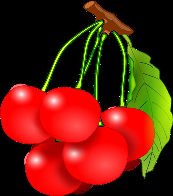 Cherries clipart cute. Brunch clip art borders