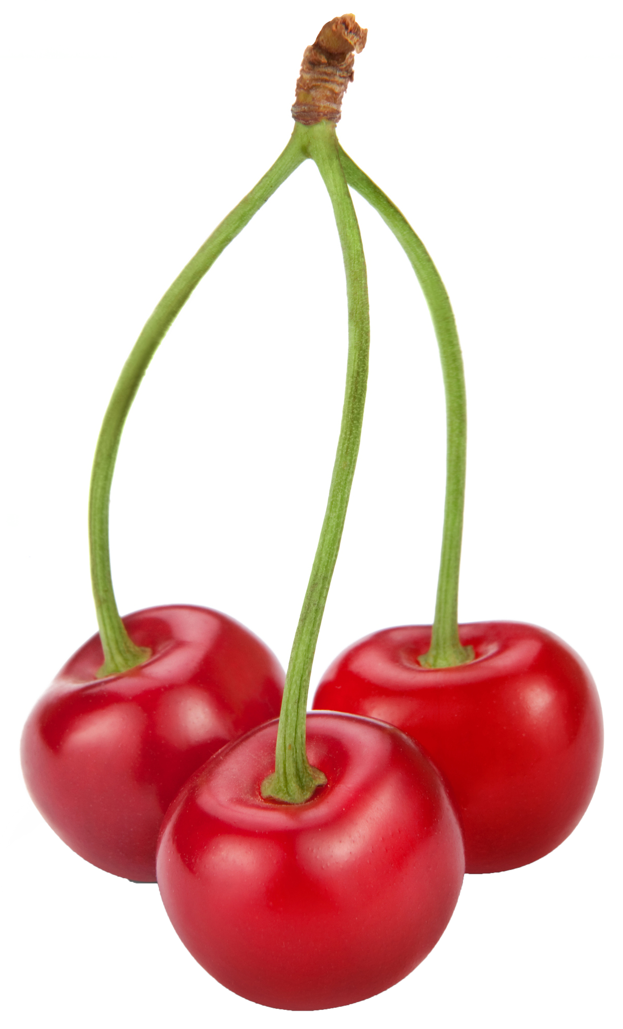Cherries png gallery yopriceville. Fruits clipart person