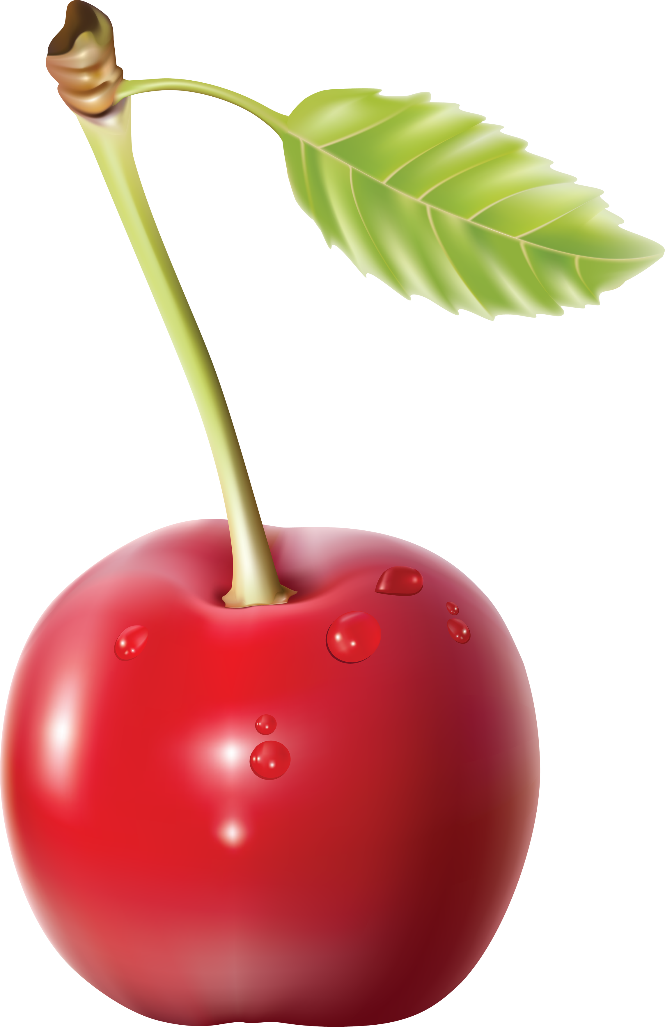 Heart clipart cherry. Png images free download