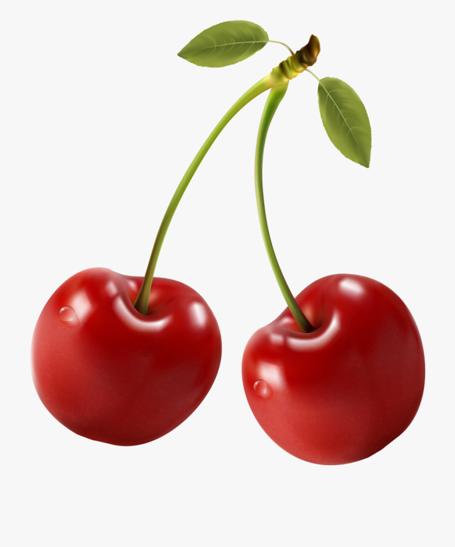 Cherries clipart red cherry. Food perfect printing labels