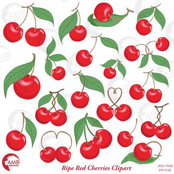 Cherry clipart vector. Cherries berry amb