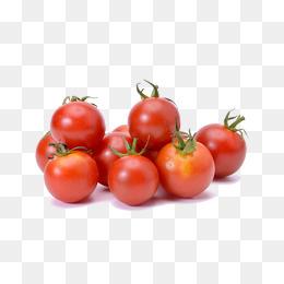 Cherry tomato png vectors. Cherries clipart vector