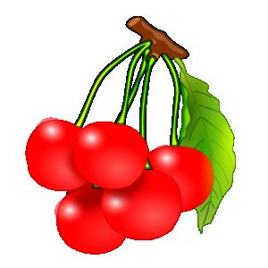 Cherry free download clip. Cherries clipart vector