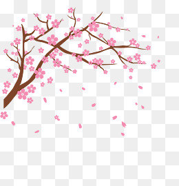 Cherries clipart vector. Cherry blossom png vectors