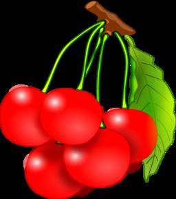 Cherry clipart cheries. Cherries i royalty free