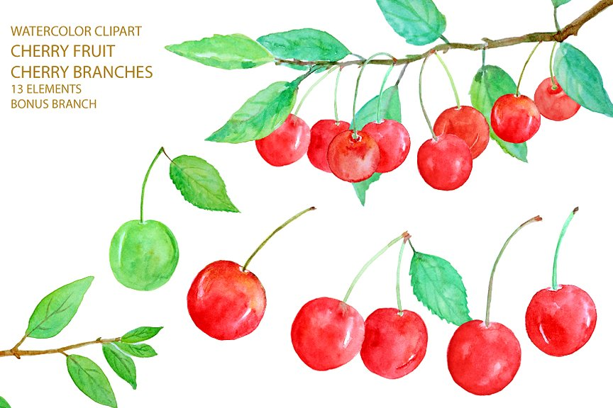 Cherry clipart cherry fruit. Watercolor red illustrations creative