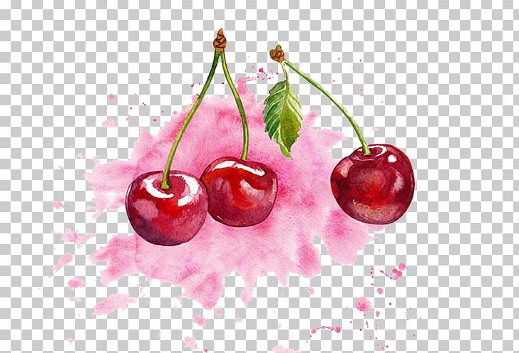 Cherry clipart color. Watercolor painting png cherries