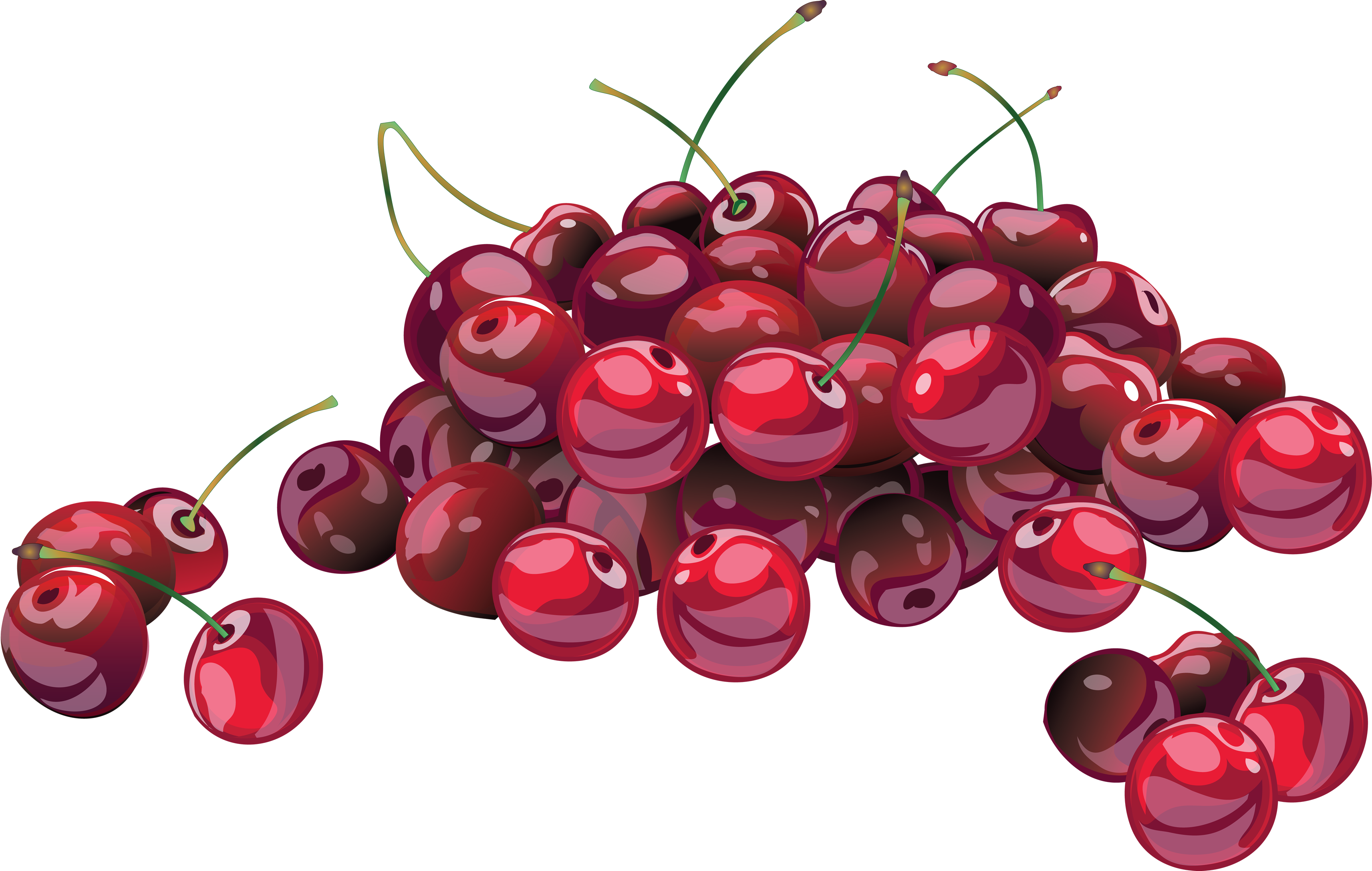 Png images free download. Cherry clipart cranberry