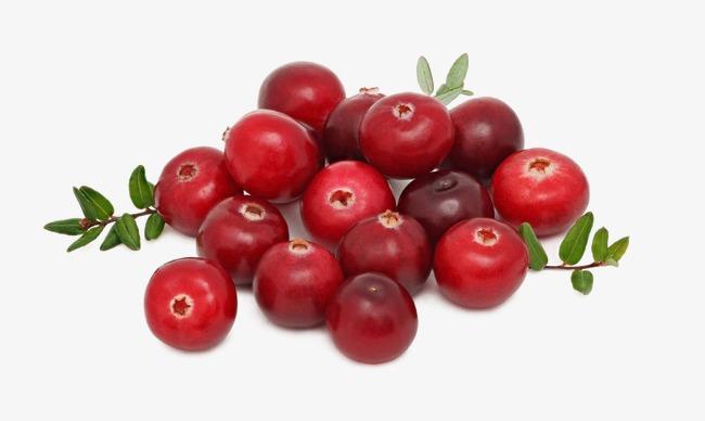 Organic fruits fresh png. Cherry clipart cranberry