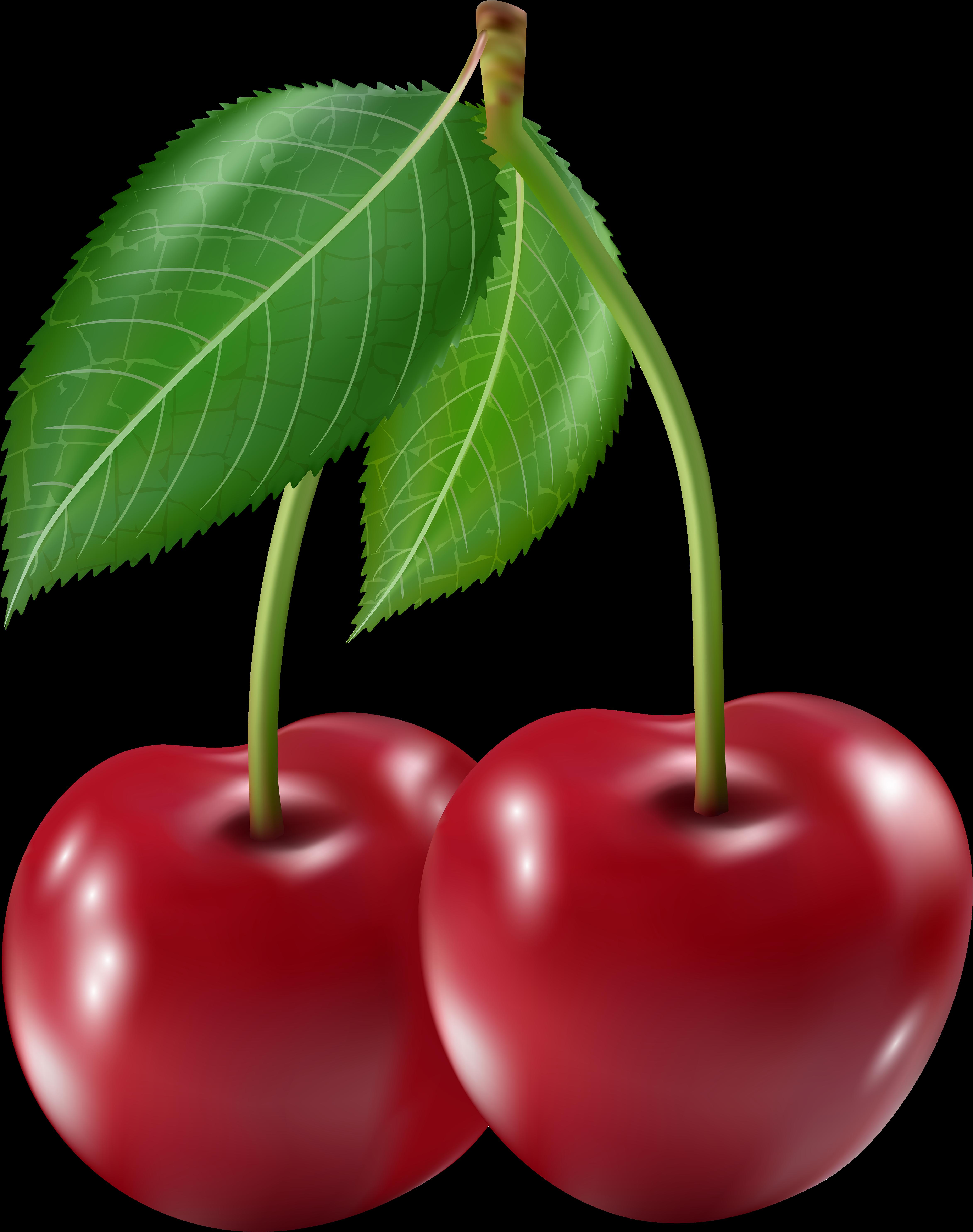 Frutas cereja png download. Cherry clipart kid
