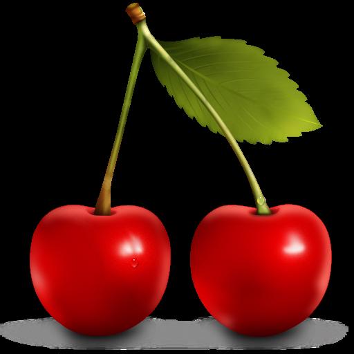 Red cherry . Cherries clipart