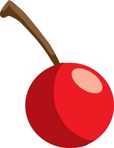 collection of single. Cherry clipart stem