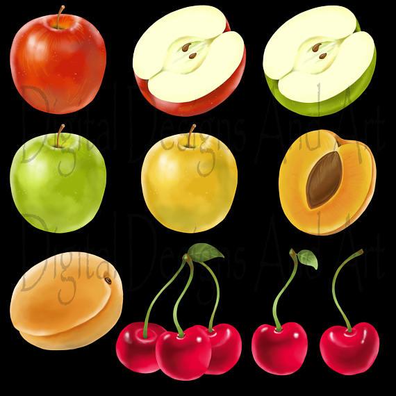 Cherry clipart unicorn. Fruit fruits illustration watercolor