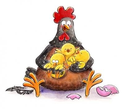 best chickens images. Hen clipart mama
