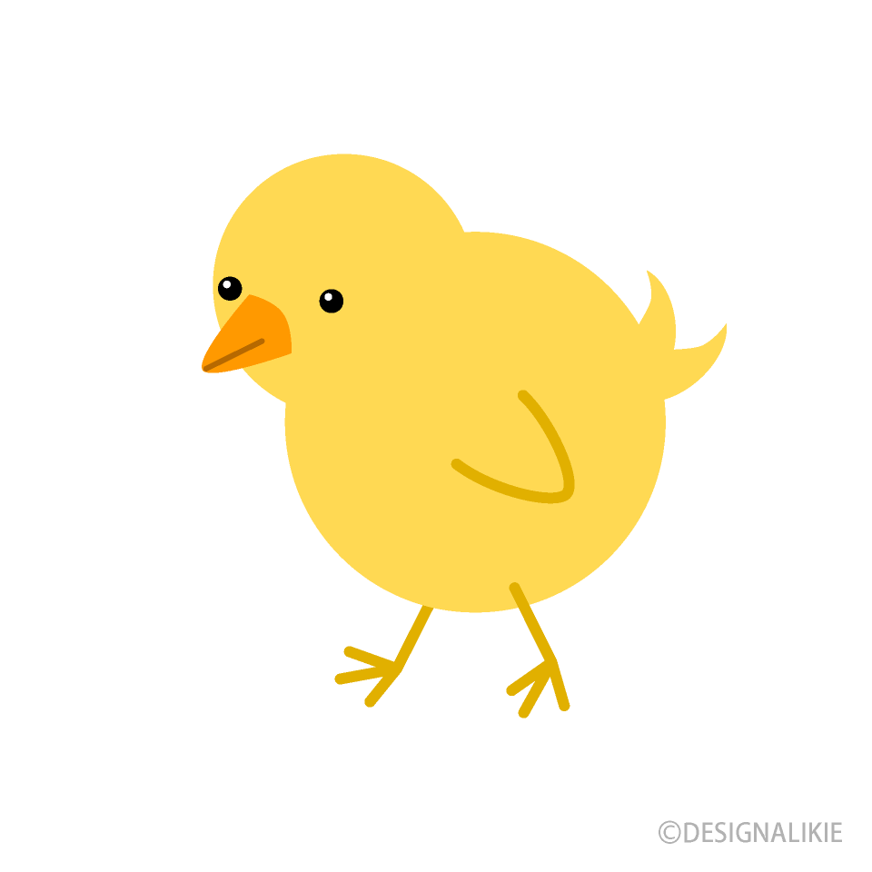 Free picture illustoon . Chick clipart