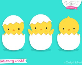 Chick clipart baby chick. Easter etsy chicks hatching