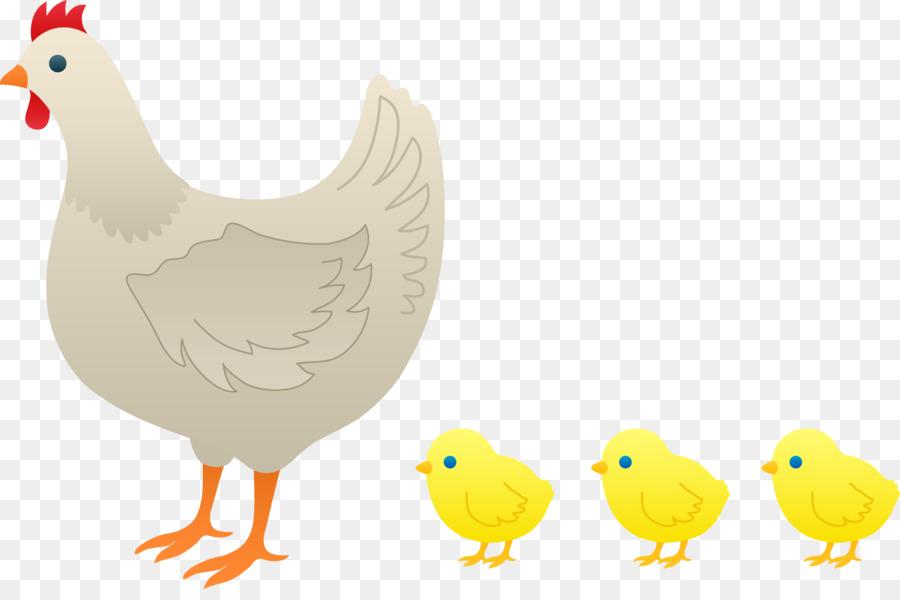 Chicken hen kifaranga rooster. Chickens clipart chick
