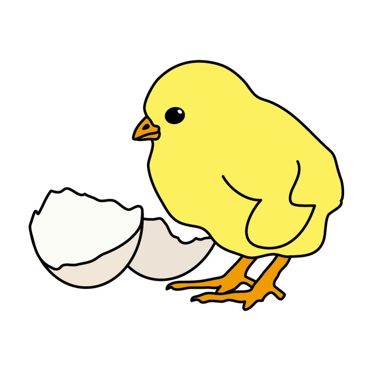 Chick clipart baby chicken. Clip art images cute