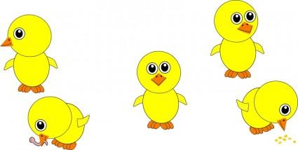 Chick clipart cartoon. Chicks image