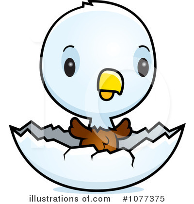 Bald illustration by cory. Eagle clipart baby eagle