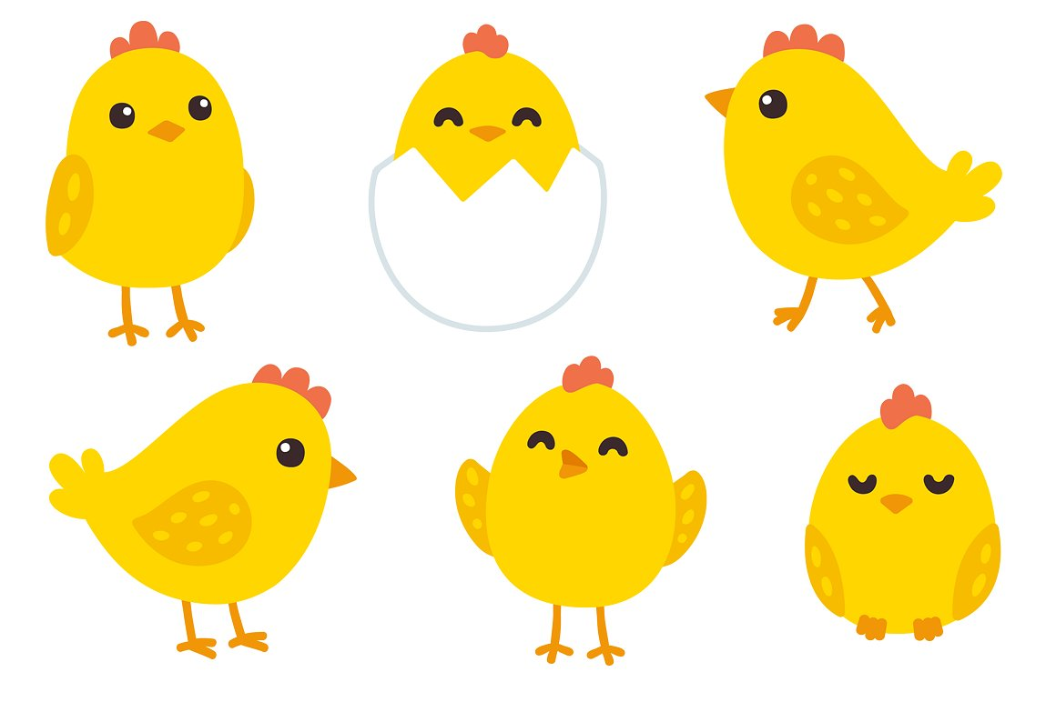Cute chickens patterns illustrations. Hen clipart baby chick