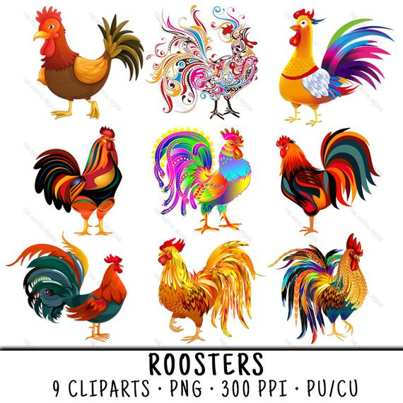 Chicken clip art png. Chickens clipart rooster