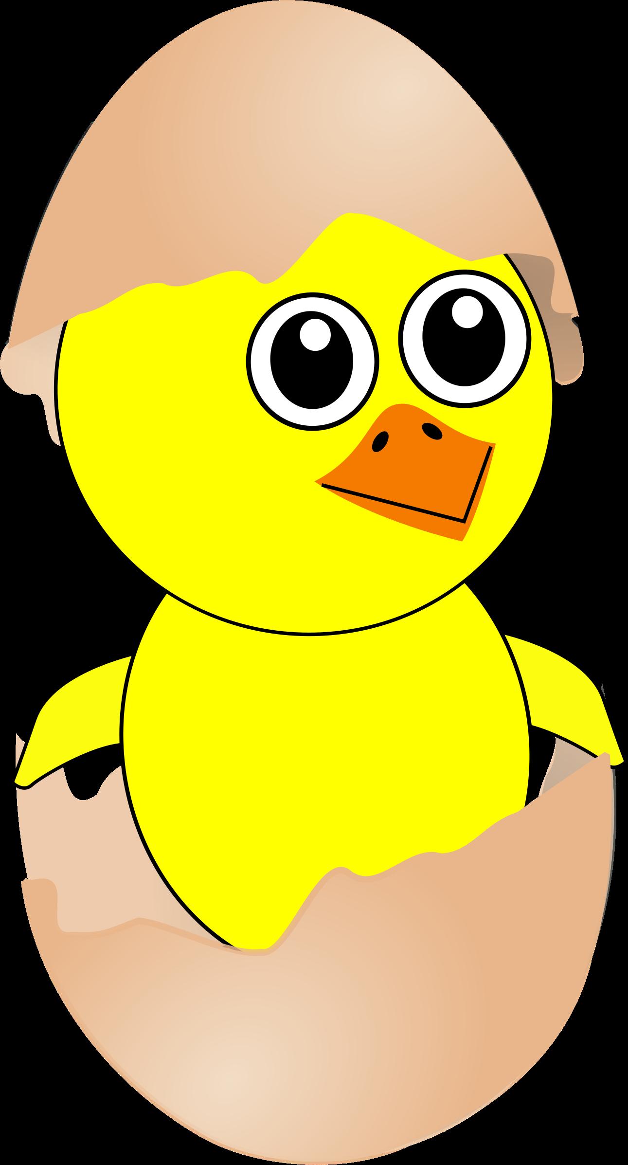 Clip art vectors download. Chick clipart vector