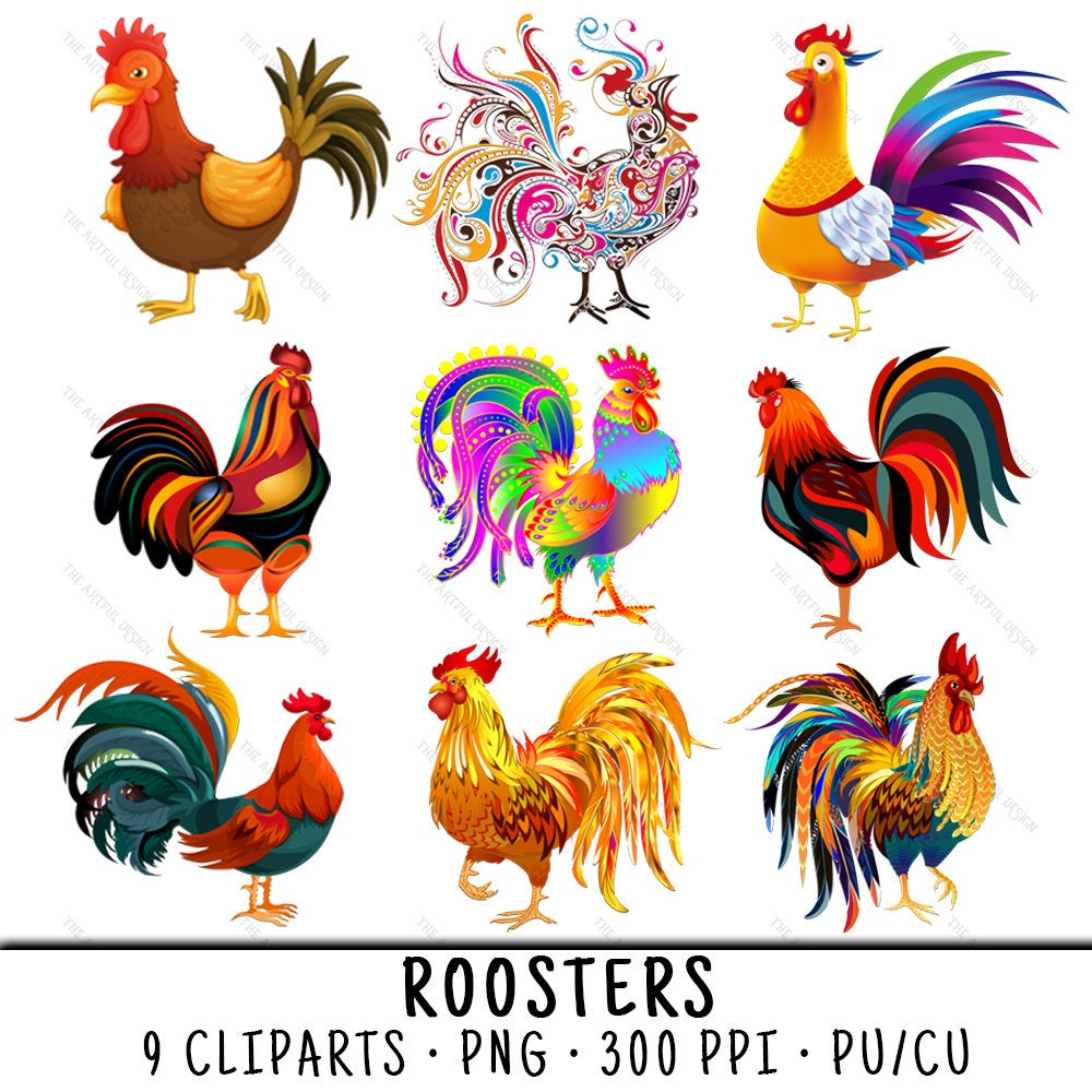 Rooster art png colorful. Chicken clipart clip