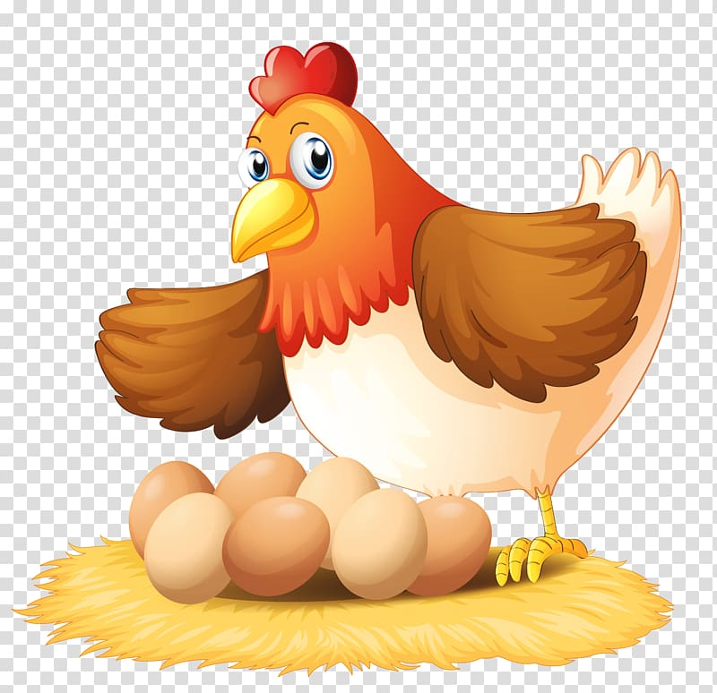 Hen clipart live chicken. Brown and seven eggs