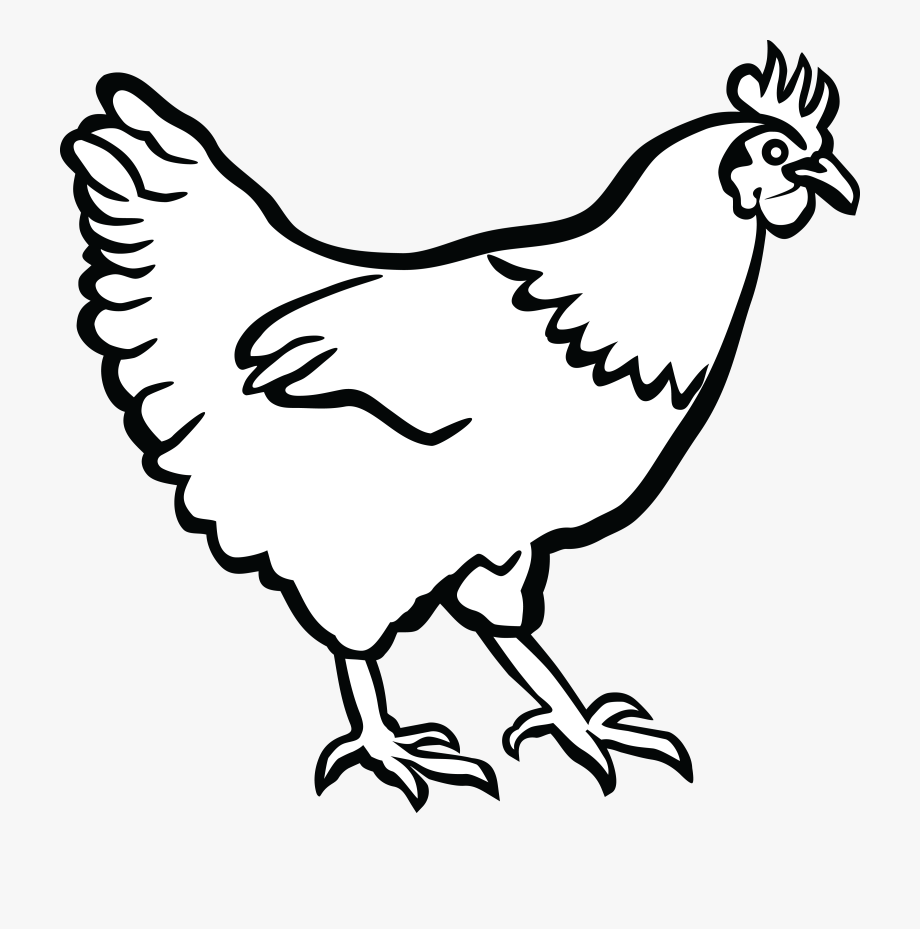 Chickens clipart line art. Hen clip of chicken