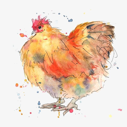 Hen hand painted chick. Chickens clipart watercolor