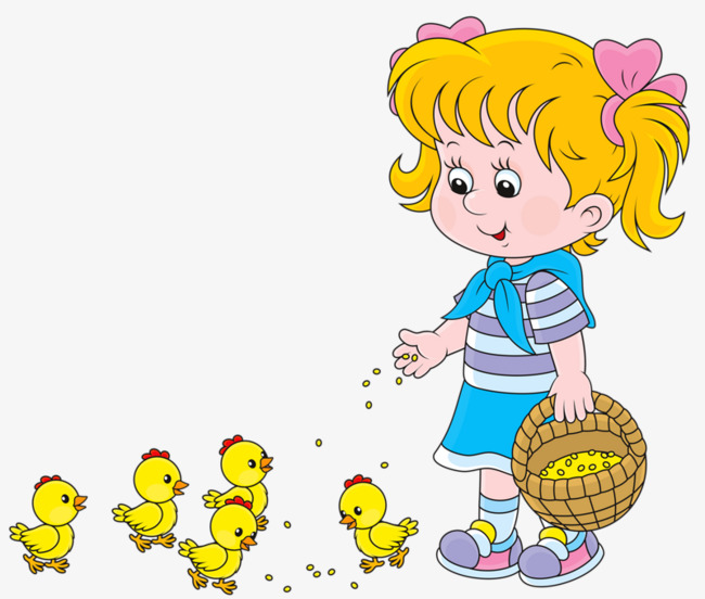 Little girl feed png. Chickens clipart chick