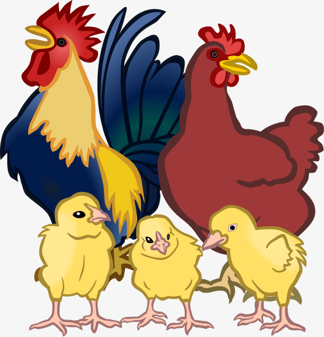 Vector hen cock png. Chickens clipart grilled chicken